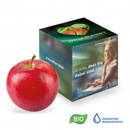 Werbe-Apfel in Promotion-Box mit Herzausstanzung