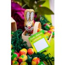 Osterkorb Bunny ca. 56 g mit Werbekarte