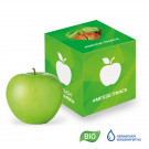 Werbe-Apfel in Promotion-Box