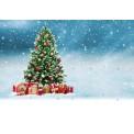 24+1 Schoko-Adventskalender BUSINESS